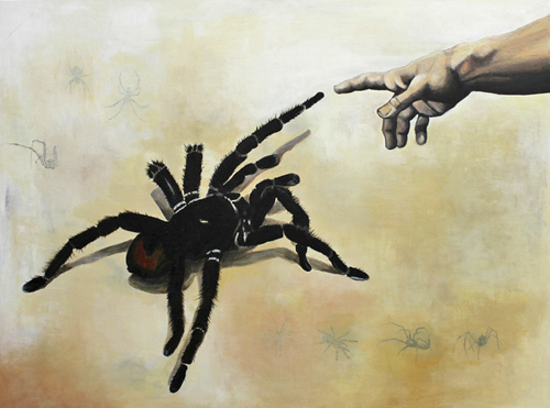 'And Creation of Spider', 2009, by Ingeborg Lund. Born 1987 in Denmark. Studying graphic design (BA) at Skolen for Visuel Kommunikation (School of Visual Communication) in Haderslev, Denmark. The Bolivian Blueleg, Pamphobetus antinous. Is one of the largest tarantulas in the world. Caranavi, Yungas. d. 22 february 2007. Photographer: Lars Andersen