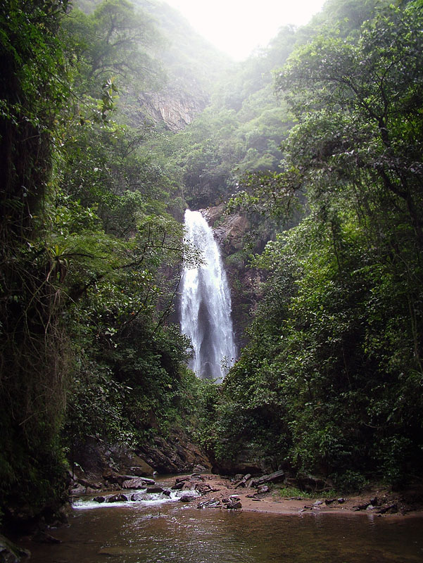 Cascades des Challa, Yungas, Bolivia 15th january 2005. Photographer; Lars Andersen