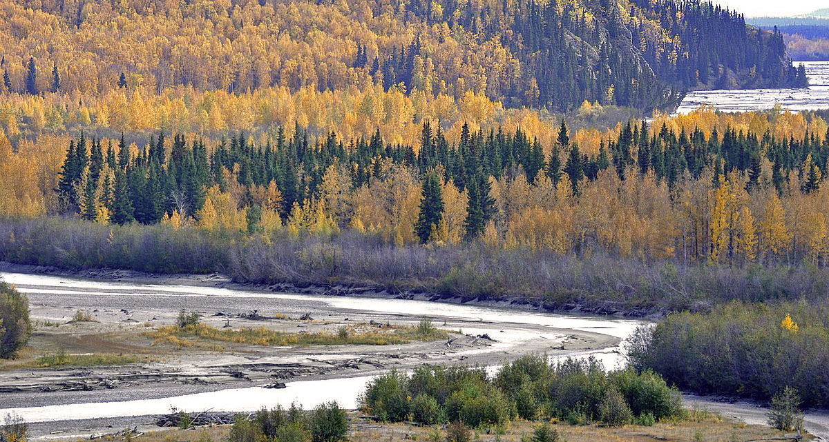 About 100km south on Fairbanks, Alaska, USA d. 13  september 2014. Photographer;  Carsten Siems